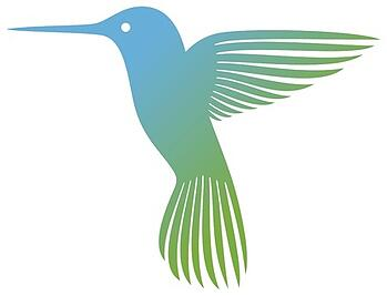 Google_Hummingbird_Update